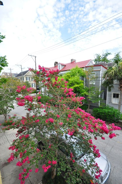 View from Second Story Porch at 72 Vanderhorst Street, Charleston, SC